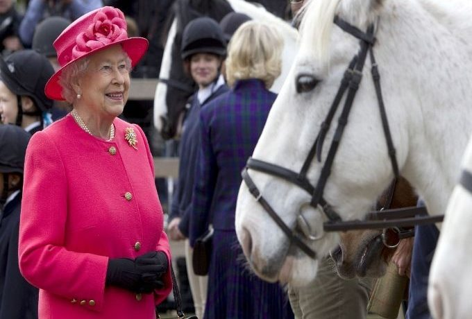 The Queen To Share Her Love Of Horses With The Nation