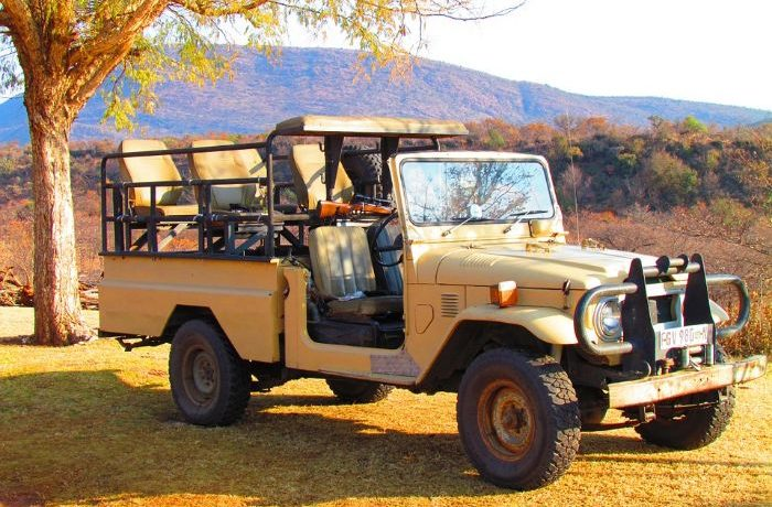 Are You Planning For Safaris South Africa?